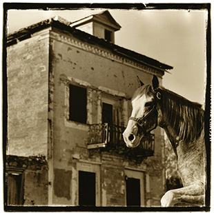 """Camino a Roma / Road to Roma (The """"jobero"""" horse, still a symbol of strength and an integral part of Roma's ranching history, is shown against the John Vale-Noah Cox House which was built in 1853)"""