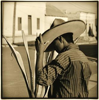 Bajo el sombrero / Under the Hat